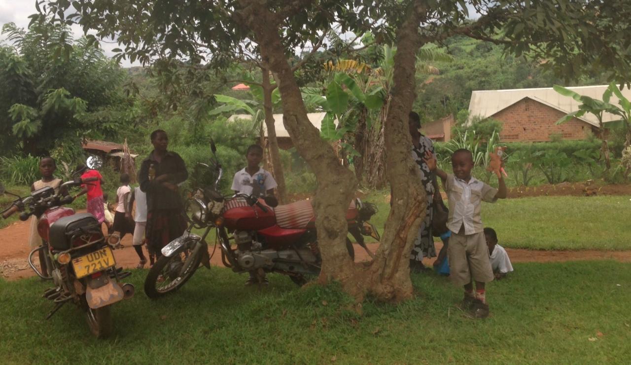 motoring_around_a_tree